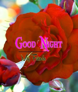 Best Good Night Images picture hd
