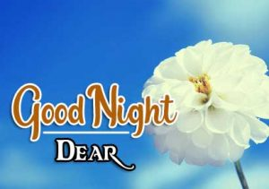 Best Good Night Images photo hd