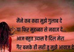 Best Shayari Collection