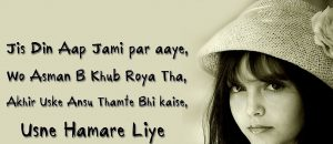 Best Hindi Dil Shayari Images free download