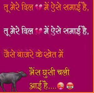 Latest Funny Shayari Images free