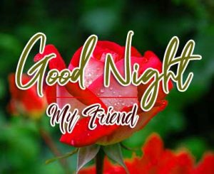 Latest Best Good Night Images photo