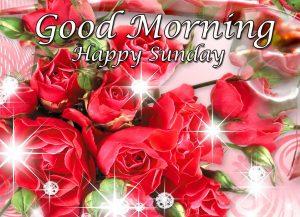 New Free Good Morning Happy Sunday HD Pics Wallpaper HD