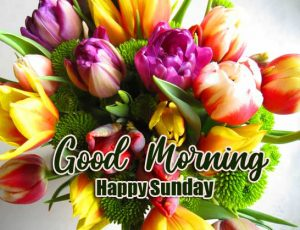 Beautiful Latest Good Morning Happy Sunday HD Pictures Latest
