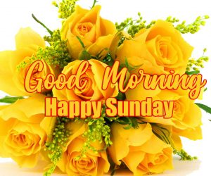 Good Morning Happy Sunday HD Pics Images With Yellow Rose