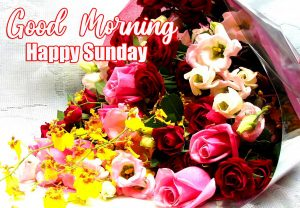 Good Morning Happy Sunday HD Pics Wallpaper With flower