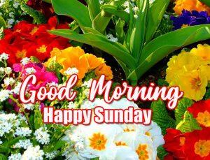 Good Morning Happy Sunday HD Pics Free Download