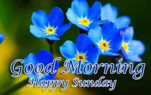 Good Morning Happy Sunday HD Pics Photo Download