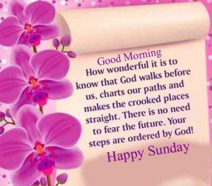 Good Morning Happy Sunday HD new Pics Download
