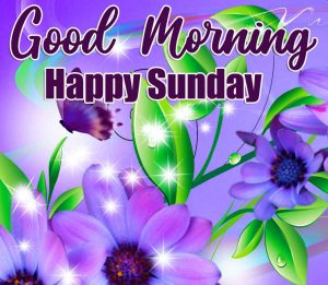 Best Free Good Morning Happy Sunday HD Pics Images Download