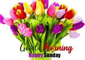 Beautiful Good Morning Happy Sunday HD