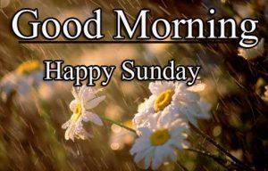 Beautiful Good Morning Happy Sunday HD Pics Wallpaper Free