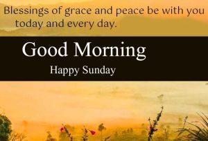 Beautiful Good Morning Happy Sunday HD Pics Downlaod