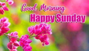 Beautiful Good Morning Happy Sunday HD Photo Download