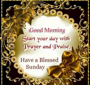 Beautiful Good Morning Happy Sunday HD Pictures Download