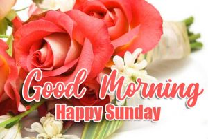 Beautiful Good Morning Happy Sunday HD Pics Wallpaper Download