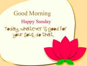 Best Quality Beautiful Good Morning Happy Sunday HD Pics Wallpaper