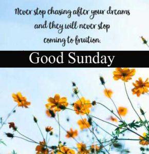 Latest New Best Beautiful Good Morning Happy Sunday HD Pics