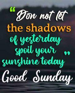 Free Best New Beautiful Good Morning Happy Sunday HD Pics Wallpaper Download