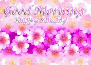 Beautiful Latest Good Morning Happy Sunday HD Pics Download Free