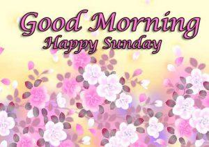 Beautiful Latest Good Morning Happy Sunday HD Pics Free