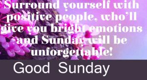 Beautiful Latest Good Morning Happy Sunday HD Pics Free Download
