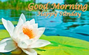 Good Morning Happy Sunday HD Pictures for Facebook