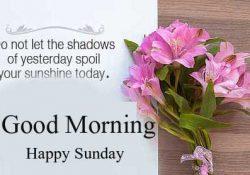 Good Morning Happy Sunday HD Images