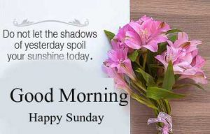 Good Morning Happy Sunday HD Images New Download Free
