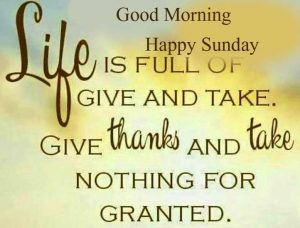 Sweet Beautiful Latest Good Morning Happy Sunday HD Pics Download