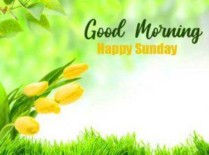 Beautiful Latest Good Morning Happy Sunday HD Pic Download Free