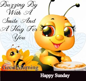 Beautiful Latest Good Morning Happy Sunday HD Pics Pictures New