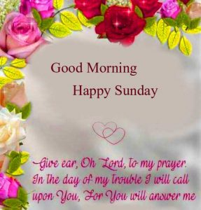 Good Morning Happy Sunday HD Images Free Download FREE