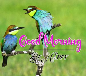 Latest FreeBest Good Morning Images Pics Wallpaper Free Download