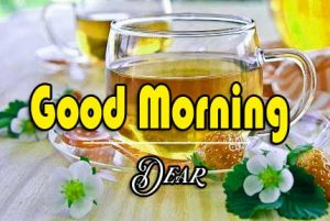 Best Good Morning Images Pics Wallpaper Free Download