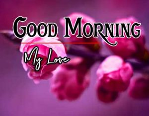 Best Good Morning Images Pics Wallpaper Download For friend