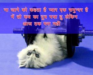 Hindi Funny Shayari Images Wallpaper Download