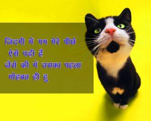Hindi Funny Shayari Images Photo for Whatsapp