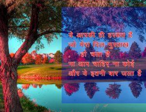 Best Quality Hindi Shayari Pics Photo Download