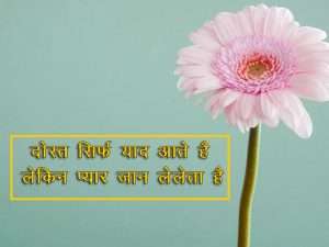 Two Line Shayari collections Hindi Wallpaper for Status