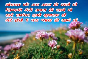 Beautiful Hindi Shayari Images With Flower