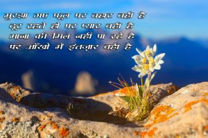 Beautiful Hindi Shayari Images for Whatsapp