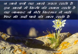 New Free Beautiful Hindi Shayari Images Download