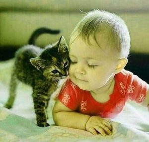 Free Cute Whatsapp DP Pics Download