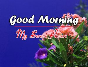 P Friend Good Morning Pics Download With Flower