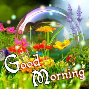 p Good Morning Images Pic Download