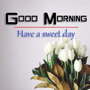 p Good Morning Images Wallpaper for Whatsapp