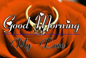 p Good Morning Images With Flower