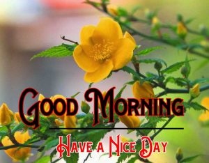 p Good Morning Pictures Download