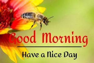 Beautifu Good Morning Images photo for hd